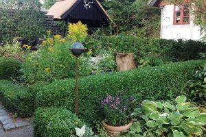 Sommerblumen im Garten bei BB Albertine bed-and-breakfast