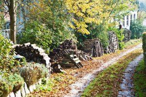 Schöne Herbstfarben und Brennholzstapel in der Einfahrt zum BB Albertine
